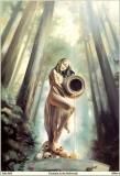 qman_jb_sas_788_fountain_in_the_redwoods
