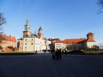 wawel all inside yard