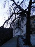 Peskova skala inside tree