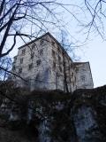 Peskova skala castle tree